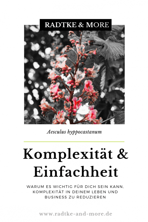 Komplexität & Einfachheit